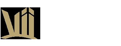 Vii GmbH & Co. KG