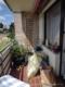 *** MIETKAUF***Helle top gepflegte 5 Zimmer in Bad Eilsen *** - Balkon 2 Ansicht